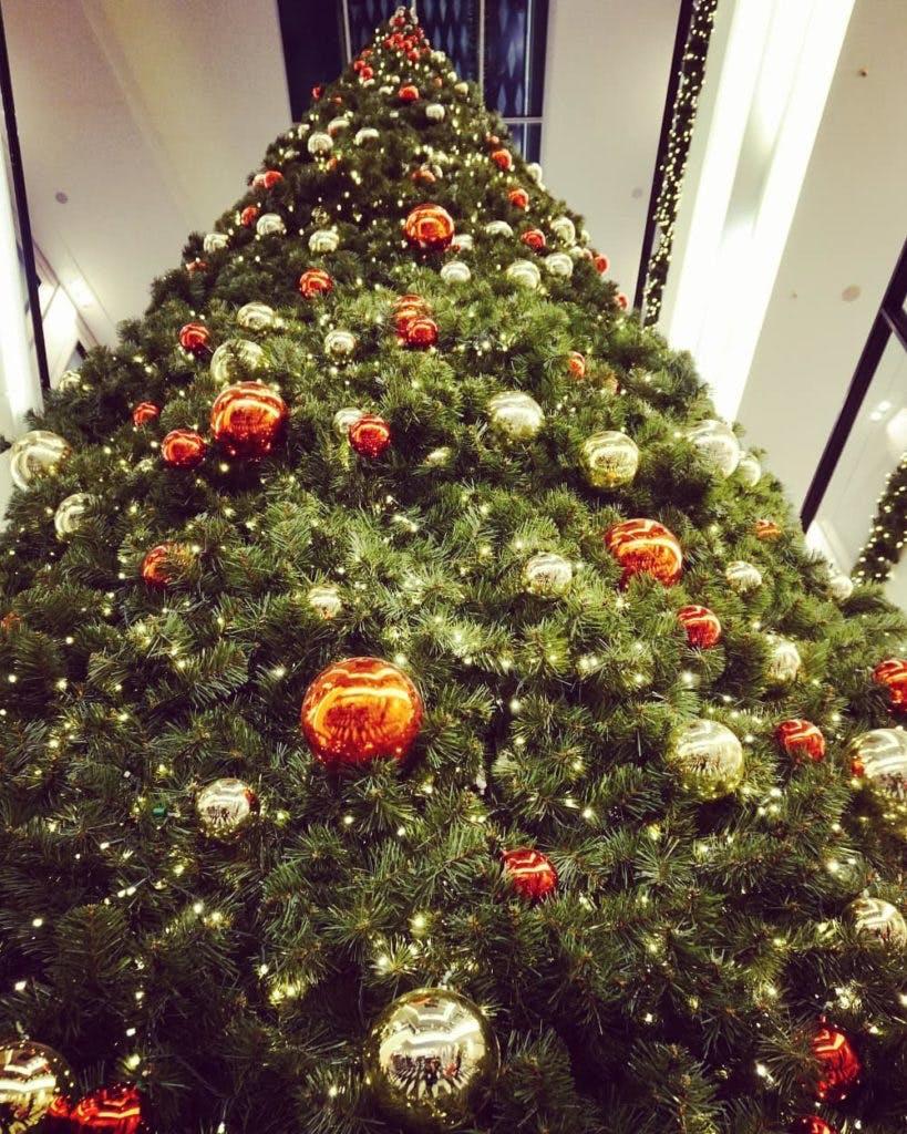 Weihnachtsbaum Münster Arkaden