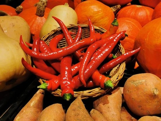 Zutaten aus dem Superbiomarkt für Kürbisrezepte in den Münster Arkaden