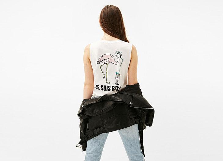flamingos_730x529