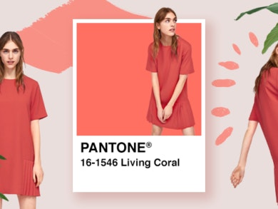 VariosSC_Cordoano-Coral02