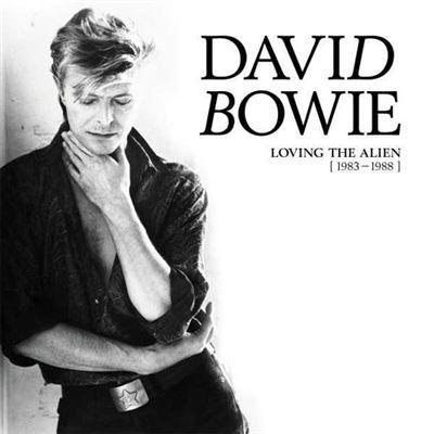 Conjunto 15 LPs de David Bowie, 260,99€