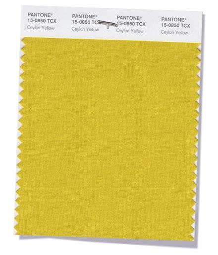 Ceylon Yellow | Um amarelo sangado, picante e exótico.