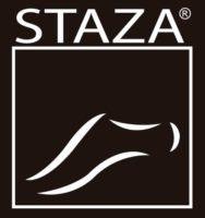 Logotipo_STAZA (Custom)