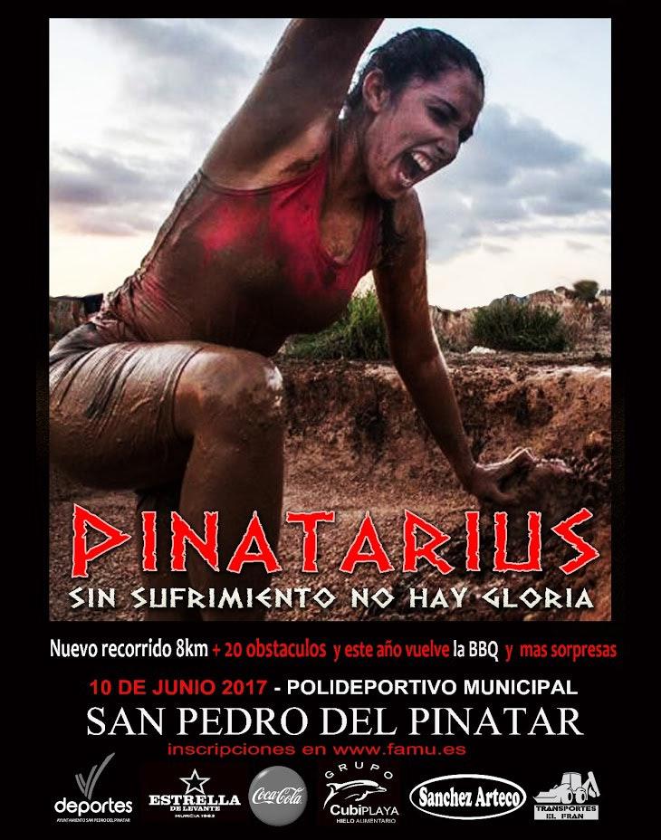 Pinatarius Obstaculum Cursus