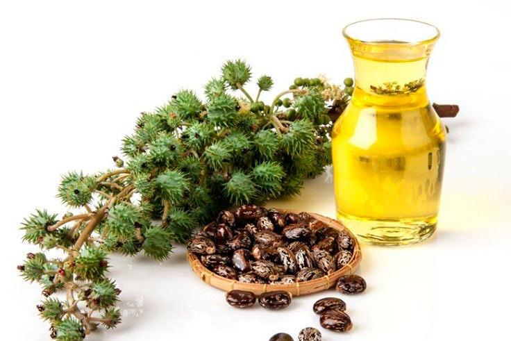 que es el aceite de castor