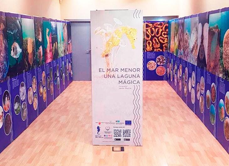 Expo-Dos-Mares