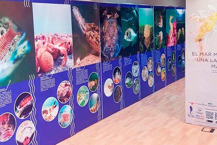 Exposición-del-Mar-Menor-en-Dos-Mares