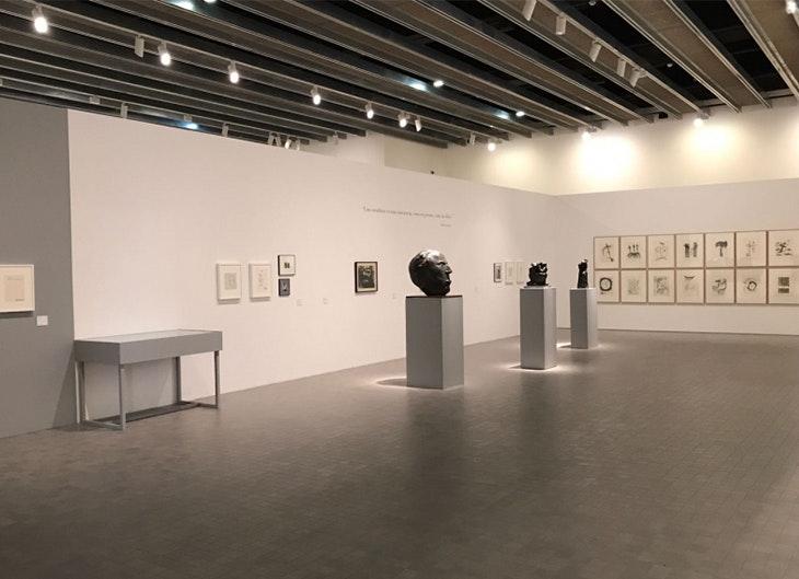 'De las Artes y las Letras: la colección'