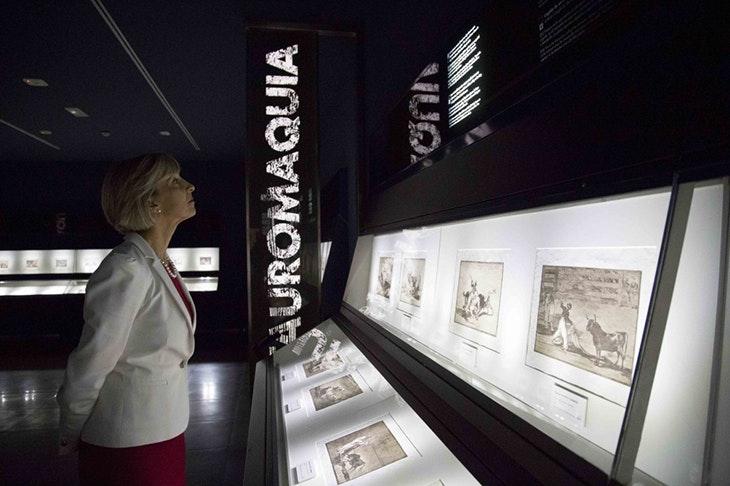¿Qué puedes hacer en el Museo Goya-Colección Ibercaja?