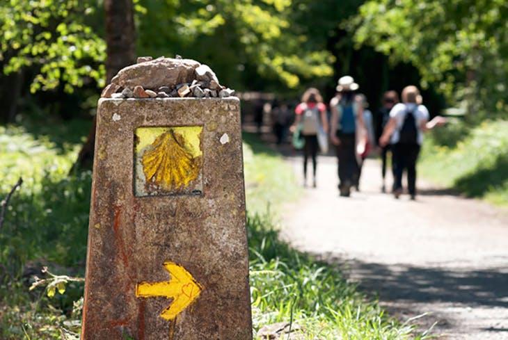 El Camino de Santiago, Naturaleza