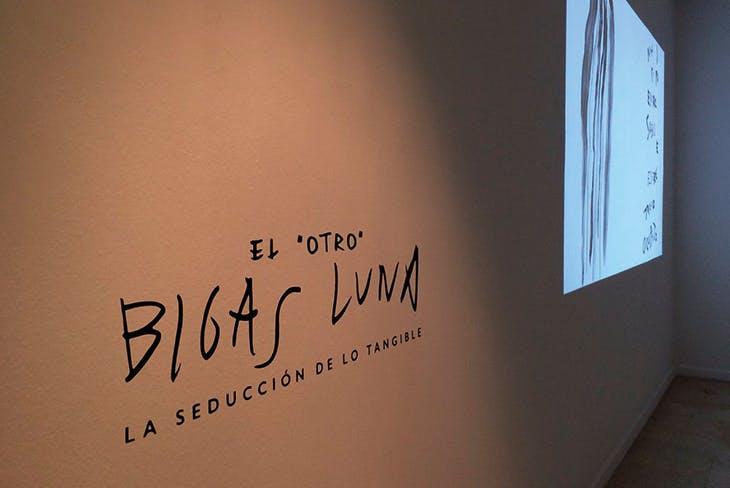 'El otro Bigas Luna'