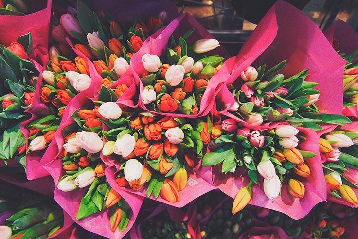 flores, Pilar, Zaragoza, ofrend