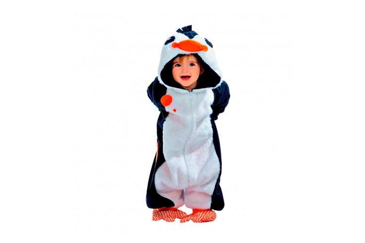 animales pingüino