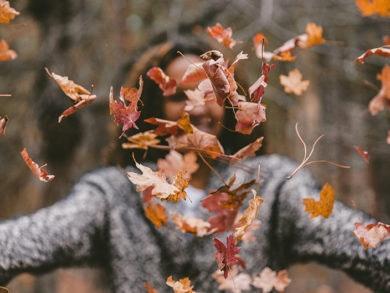 otoño-2019