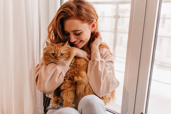 Feliz Día Internacional del gato