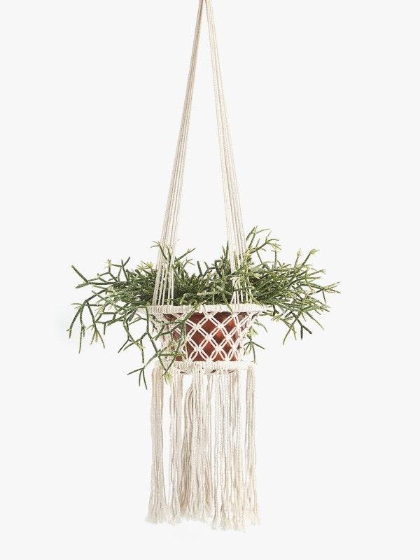 Suporte para plantas, Zara Home, 29,99€