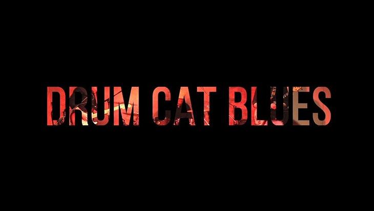 Drum Cat Blues