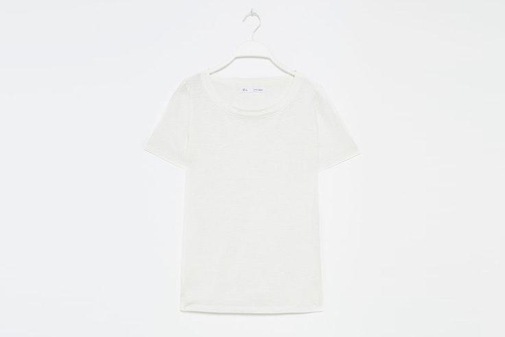 camiseta manga corta blanca sfera