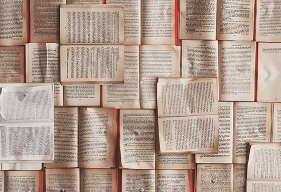 Dia do Autor Português: 6 livros fresquinhos para comemorar!