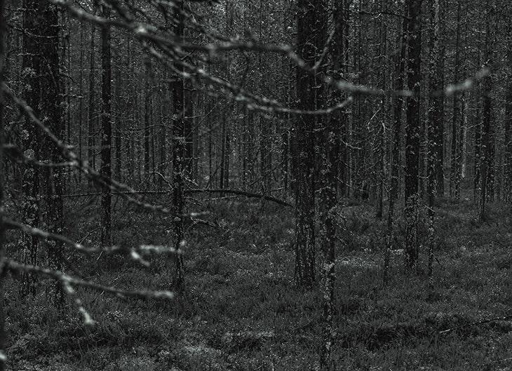 Ruta Sorginak: descubre el país de las brujas