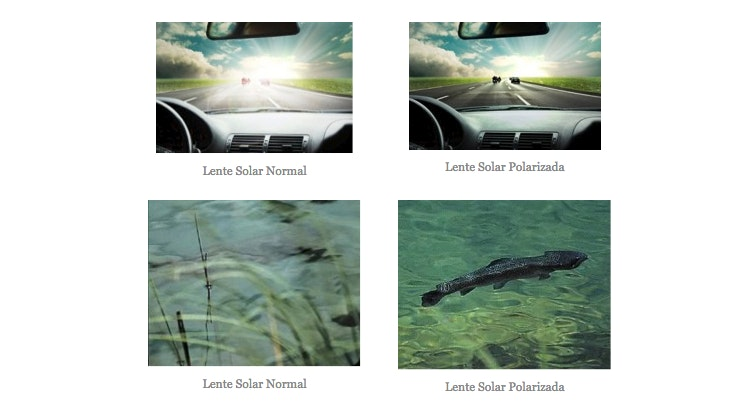 Gafas de sol polarizadas: protege tu vista en todo momento