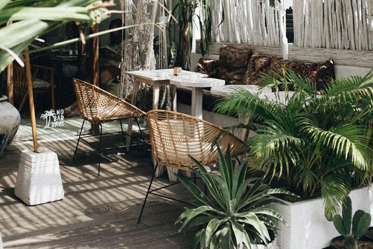 decoracion-terrazas-plantas