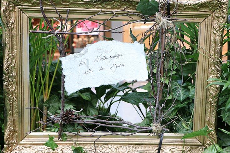Espejo, moda, vegetación