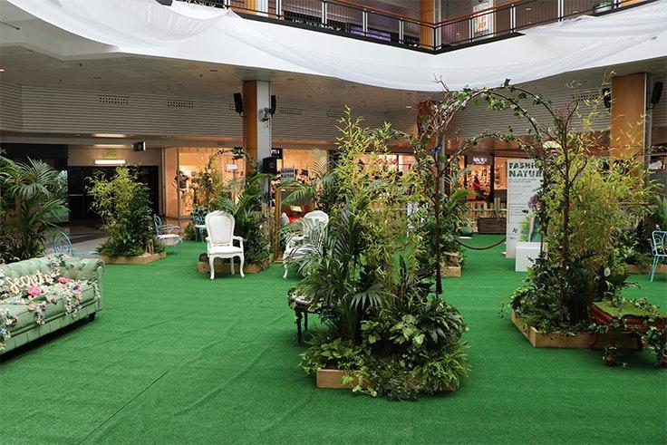 jardín, moda, evento, vegetación