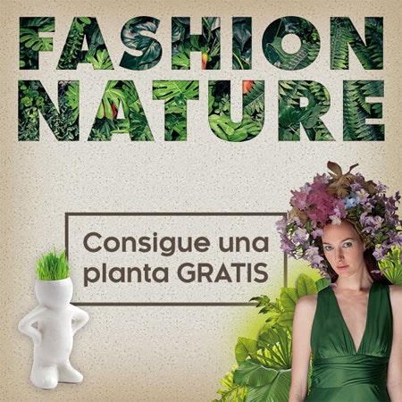 Planta gratis Fashion Nature