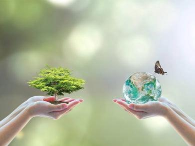 dia mundial medioambiente