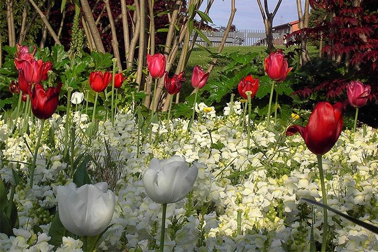 jardin botanico barakaldo