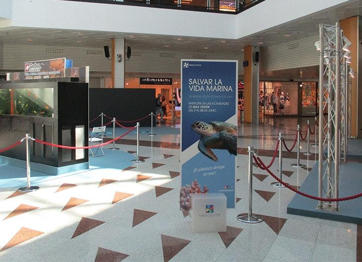 evento salvar la vida marina