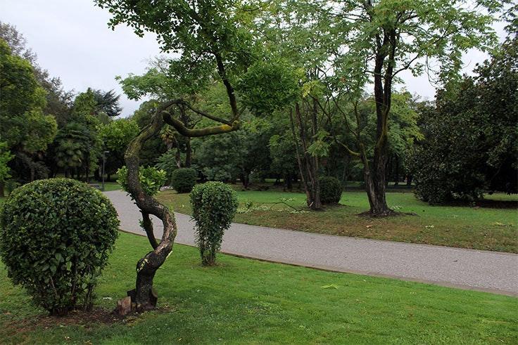 deporte-en-Barakaldo-jardín-botanico