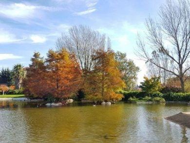 Barakaldo Jardín botánico