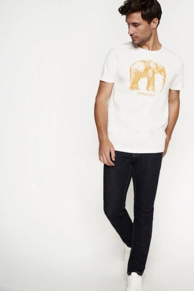 Elefante, 15,99€