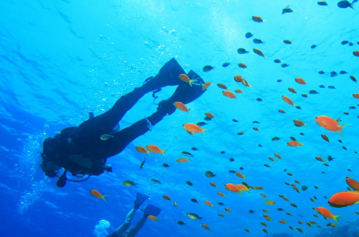 Málaga, un lugar ideal para practicar deportes acuáticos
