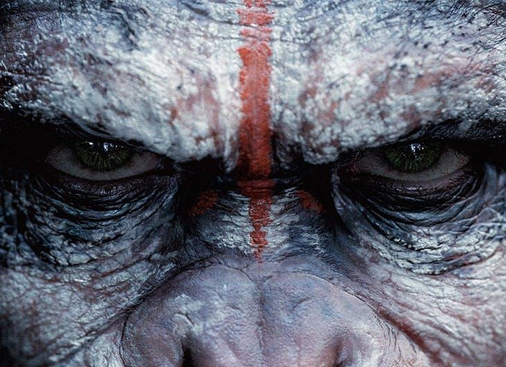'La Guerra del Planeta de los Simios' llega al CC Plaza Mayor
