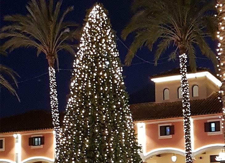 Árbol de Navidad en Plaza Mayor