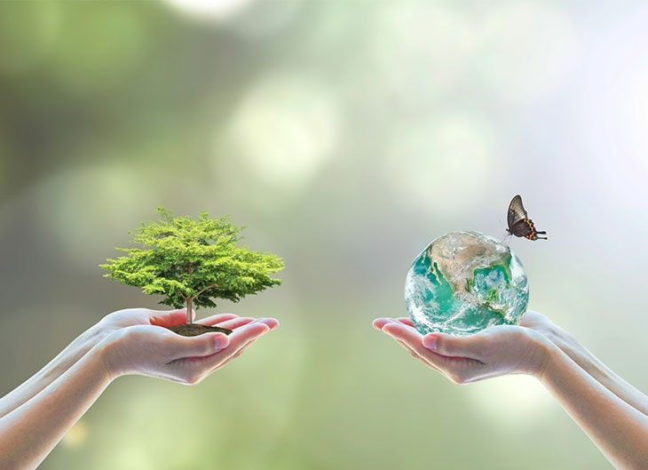 Día Mundial del Medio Ambiente 2019 - Lema y cómo celebrarlo