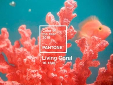 color-pantone-2019-729x528