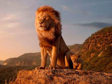 el-rey-león