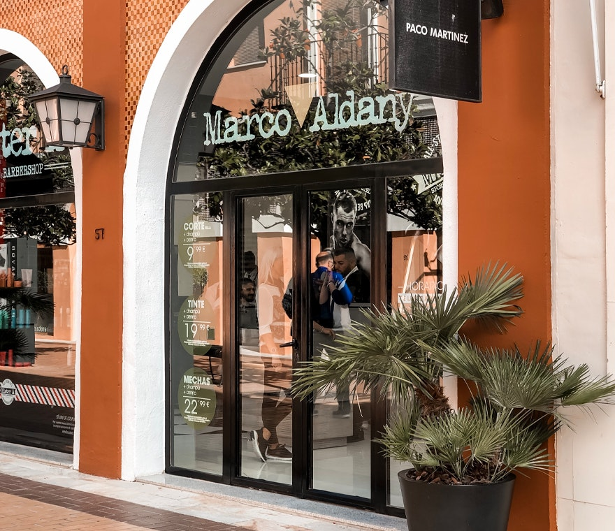 Marco Aldany.png