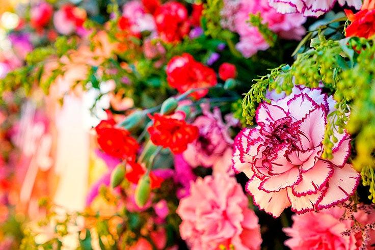 sorteo primaveral plaza mayor