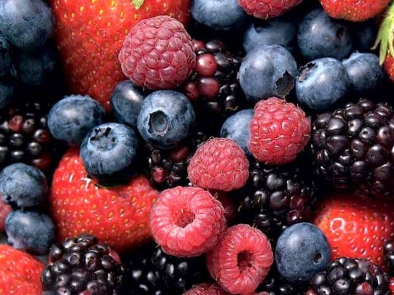 Frutos Vermelhos