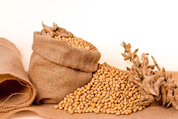 5 beneficios de la soja increíbles y sorprendentes