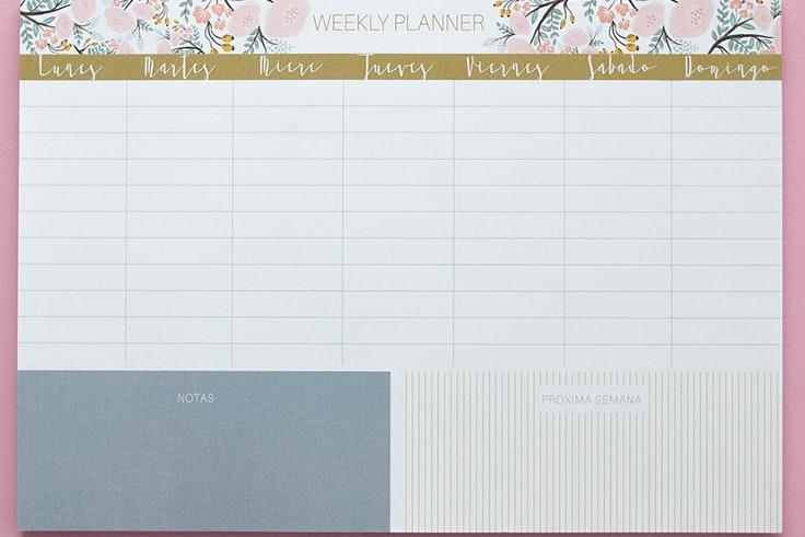 planificador, agenda, escolar, niños