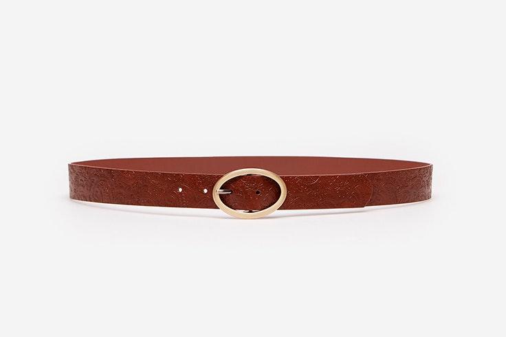 Cinturón marrón de Springfield