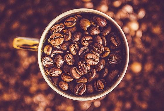 Ardina Café: o spot ideal para um café rápido