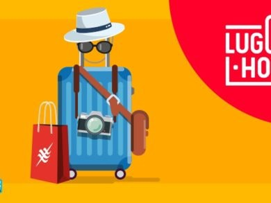 luggage home