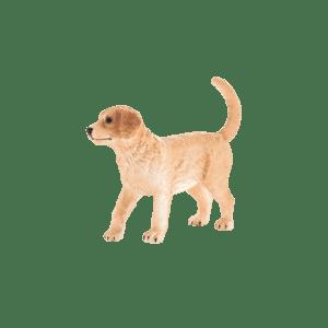 Boneco Cria de Cão Golden Retriever | 3,95€